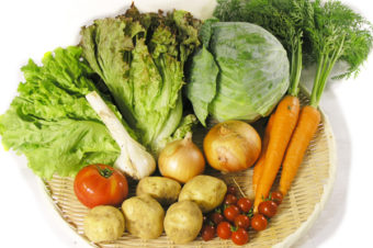 今週のおまかせ野菜セット定期便のお知らせ