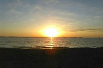 元旦海岸清掃「コンビナートの街にアカウミガメを呼び戻そう」