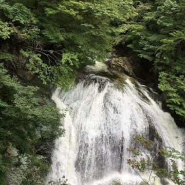 """生命を繋げ、生命を育む、奇跡の水""""伏流水""""を知っていますか?"""