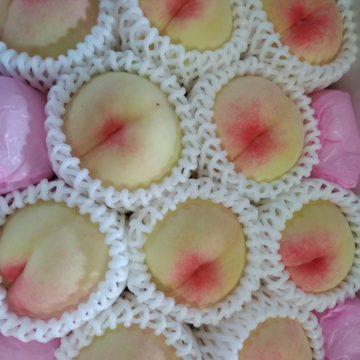 農業用ミネラルで育てた岡山の白桃が届きました。